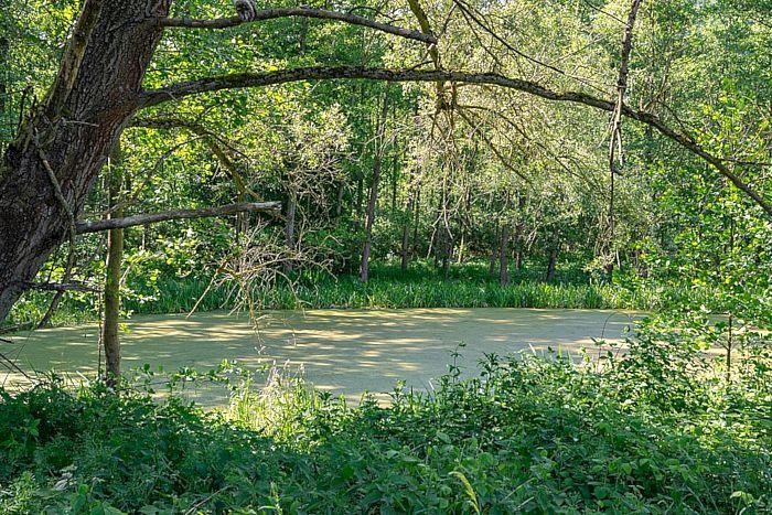 Naturschutzgebiet Grundlose-Taubenborn