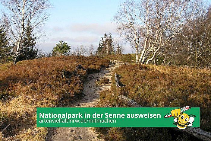Volksinitiative Artenvielfalt: Nationalpark in der Senne ausweisen