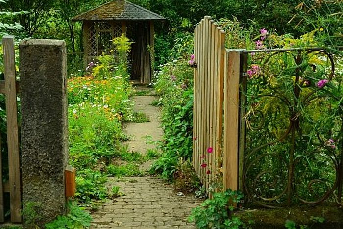 Wilde Stellen im Garten sind insektenfreundlich