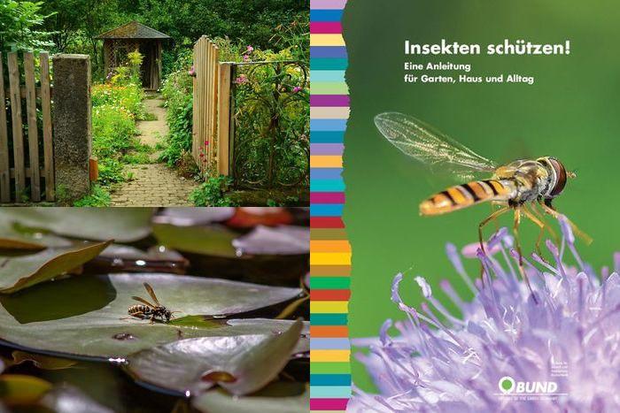 Insekten schützen: Eine Anleitung für Garten, Haus und Alltag