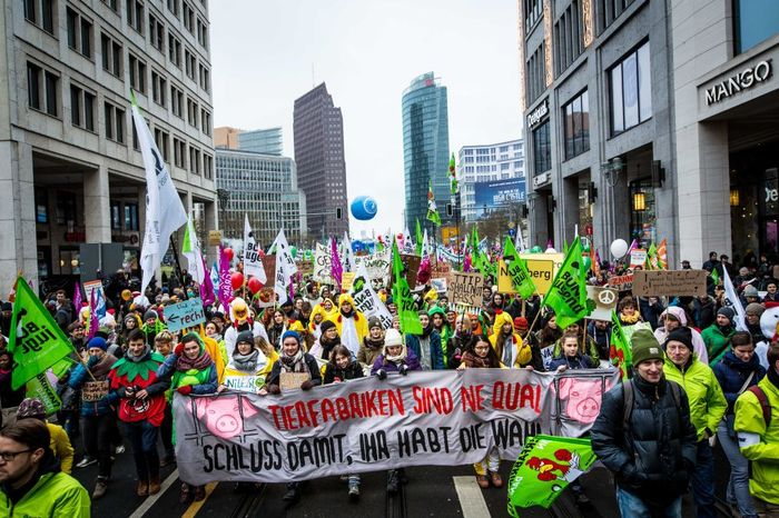 """""""Wir haben es satt!""""-Demo 2017 in Berlin"""