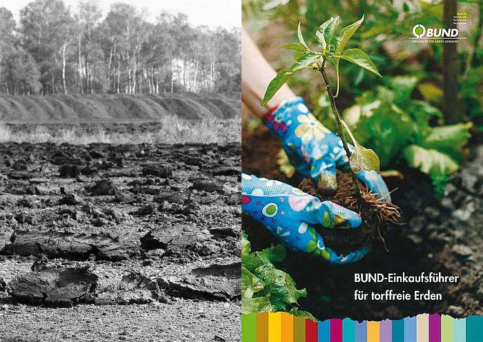 Moore & Klima schützen: Torffrei gärtnern
