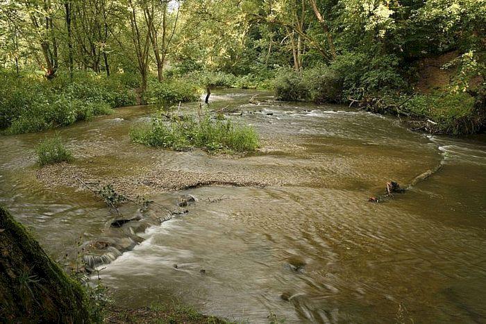 Gewässerstruktur der Werre